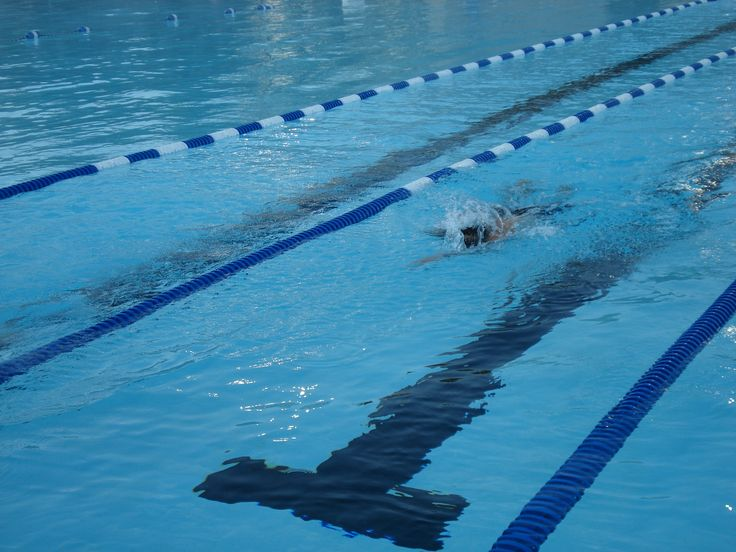 Lap Swimming For Exercise Swim Workouts For Beginners Spartan Race Get Fit Pinterest