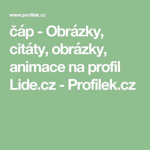 čáp - Obrázky, citáty, obrázky, animace na profil Lide.cz - Profilek.cz