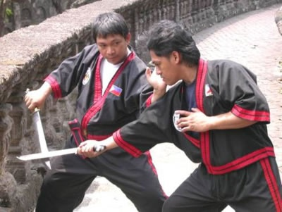 Kung Fu Philippines | Learn Kung Fu in the Philippines