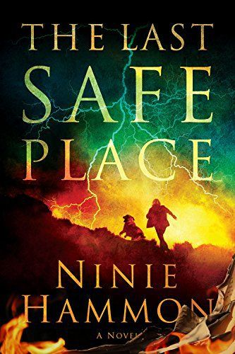 The Last Safe Place free book