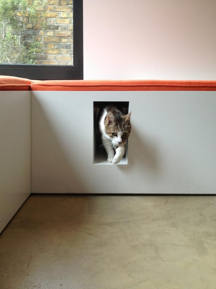 Built in space for cat in London townhouse remodel kitty litter cat nook