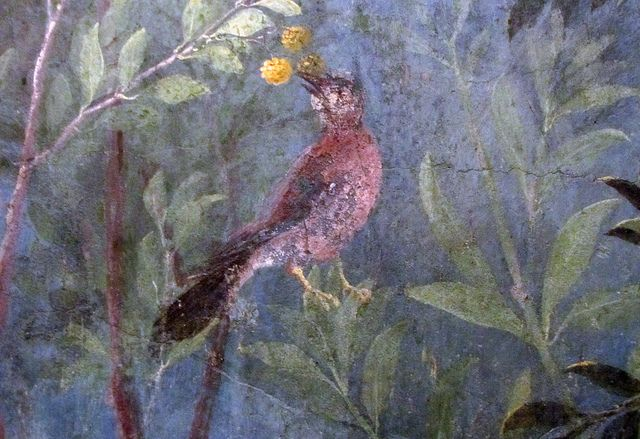 Painted Garden, Villa of Livia, detail with red bird and yellow berries by profzucker, via Flickr