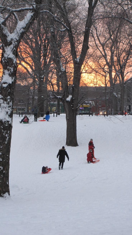 Montréal in the snow