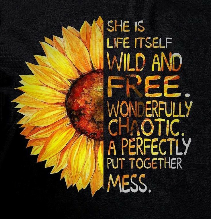 perfect mess   Sunflower quotes, Sunflower pictures ...