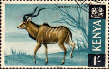 Postage Stamps Kenya 1966 Republic Animals Greater Kudu SG 29 Fine Used Scott 29 For Sale Take a look