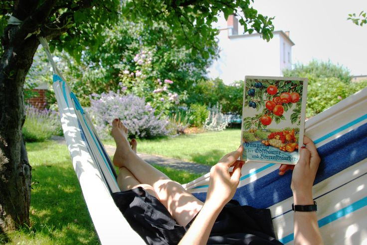 one of our favorite places - the hammock under shady fruit trees ...
