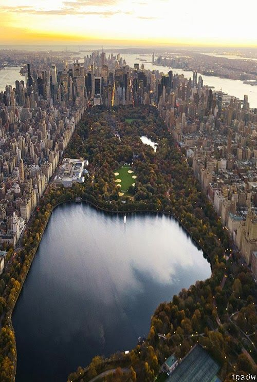 Top View of Central Park Manhattan, New York City