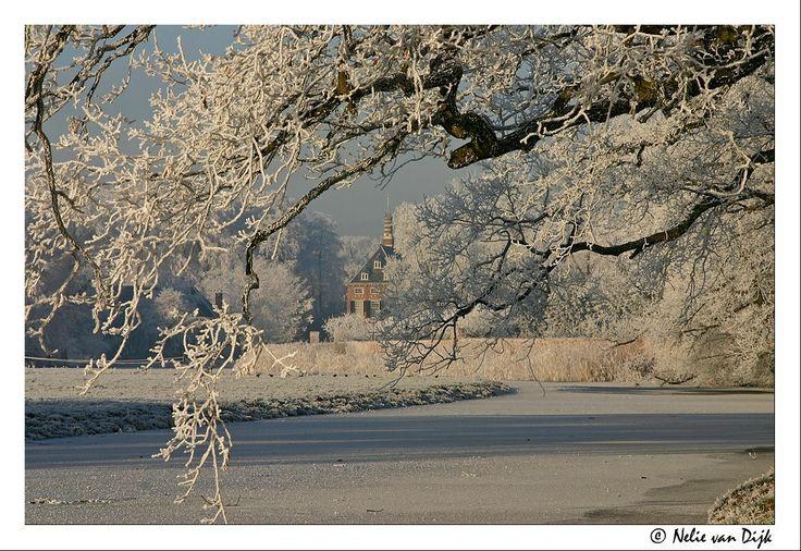 Verscholen.... The Netherlands