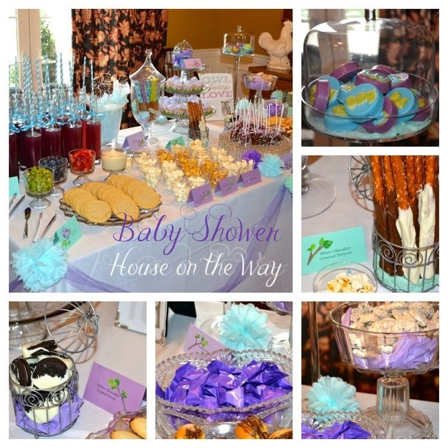 purple and aqua owl themed baby shower ideas