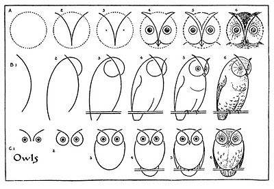 Kids Vintage Printable - Draw Some Owls, from The Graphics Fairy LLC -- this blog has tons of other how-to-draw printables!
