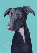 Dog portrait - digital art created by Paintchya.com , digital paintings start from $35 for an A6 image
