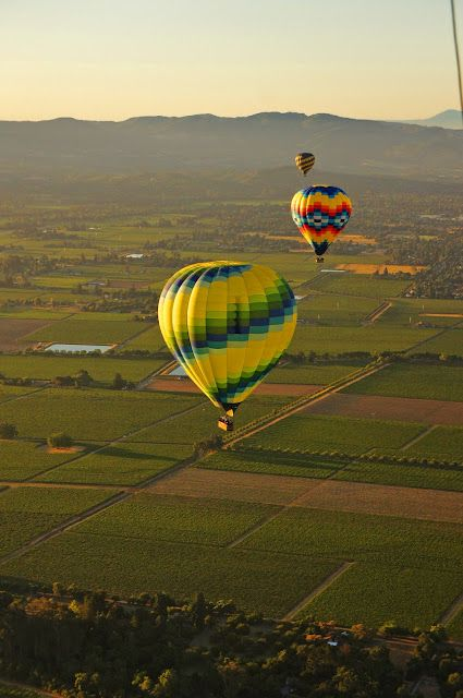 Napa Valley, Great place for a Hot Air Balloon Ride.  California more than just the Vineyards....