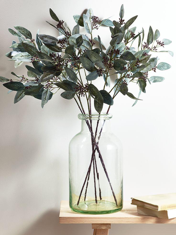 Hellebore Seeded Eucalyptus Google Search Zyla S