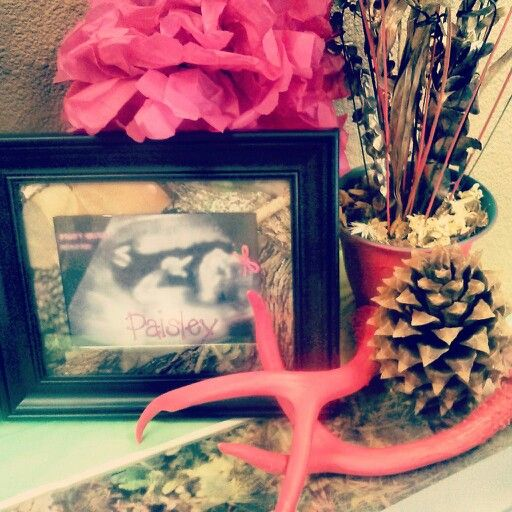 Lil' Hunting Diva Baby Shower! Baby girl camo camouflage hunting themed baby shower. Camo and pink party decorations