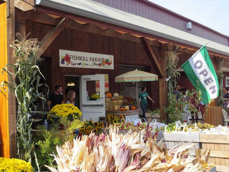 Apple, Pumpkin and vegetable Picking at beautiful Fishkill Farms - with sprawling orchards, an applewood grill, hayride and market store stocked with freshly made pies, jams and donuts, the farm provides a complete day of family fun!
