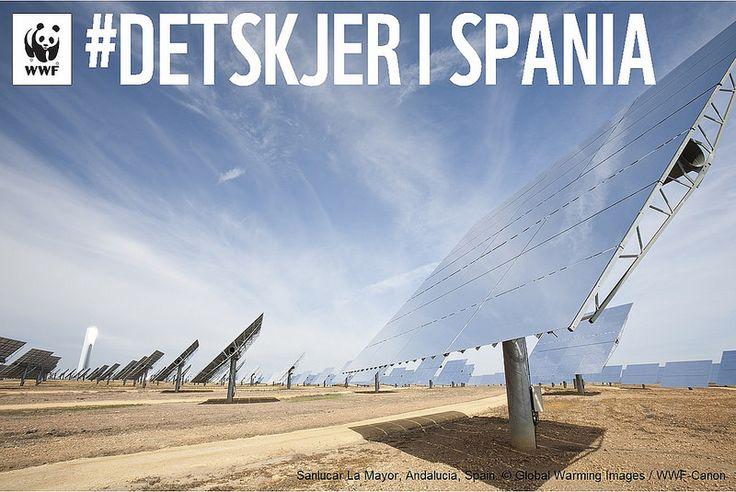 #DetSkjer i Spania. Seize Your Power