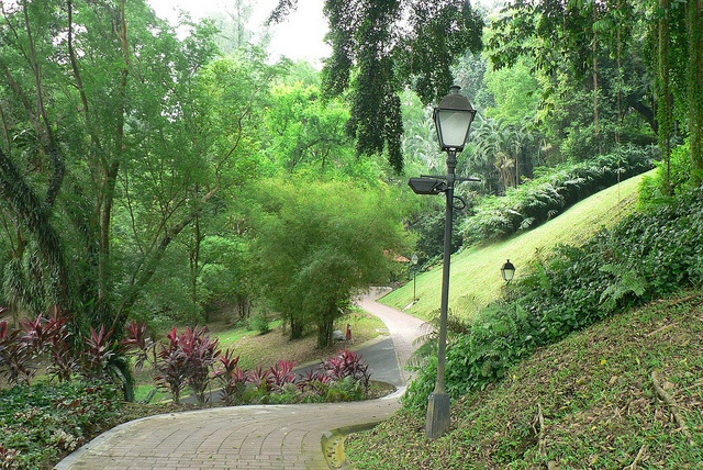 Singapore, Fort Canning Park P1110123 by ianw1951, via Flickr