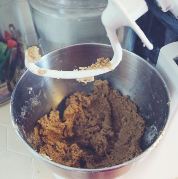 Kitchenaid dough hook and gingerbread