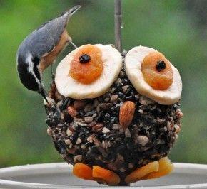 Vogelvoeder uil. Smelt 500gr ossenwit in de pan en meng dit dan met 500 gram zaad, Druk dit in een vorm en druk dit goed aan. Na 5 min. kun je hem er weer uit halen en plak je er zo alles op omdat het vet nog een beetje zacht is.
