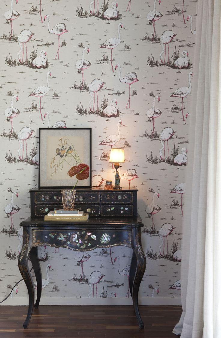 64 best flamingos wallpaper images on pinterest | flamingo