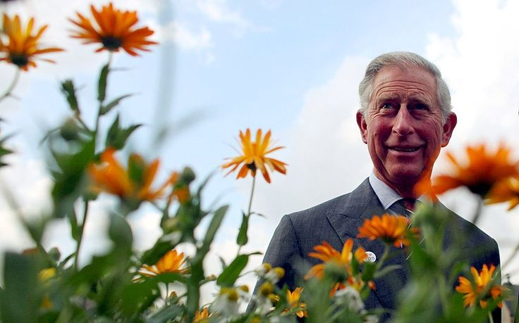 """David Heath paved the way for Britain to relax the rules on genetically modified food last week when he said the Liberal Democrats did not have any """"theological"""" opposition to controversial biotech crops. The agriculture minister still has a long way to go, however, if he is to change the mind of the Prince of Wales."""