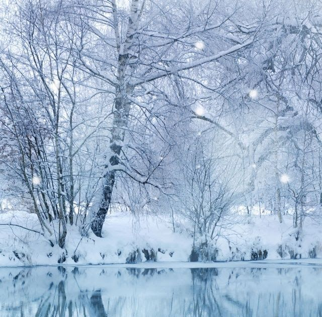 30 Winter Wallpaper Desktop Free Winter Wallpapers Hd Desktop Backgrounds Images And Winter In 2020 Winter Wallpaper Desktop Winter Wallpaper Free Winter Wallpaper