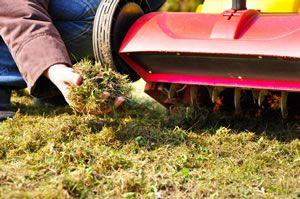 Bei vermoosten Rasenflächen fällt sehr viel Grünabfall an