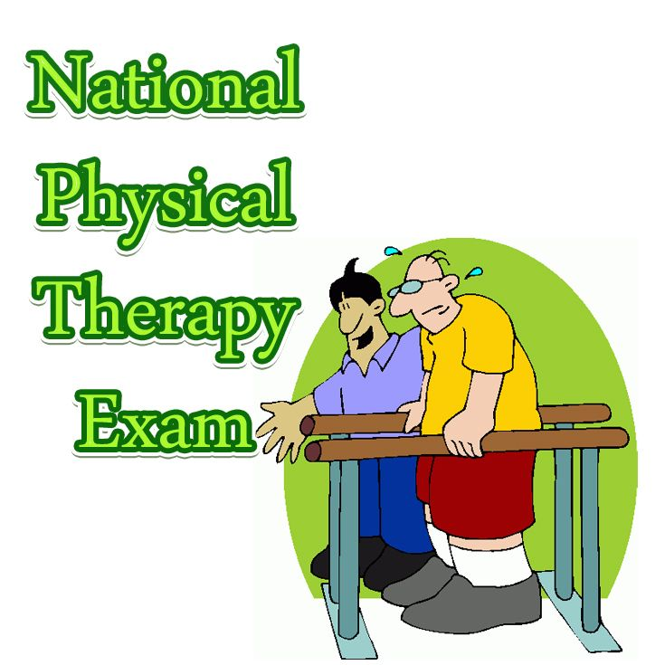 What should I major in to become a PT?