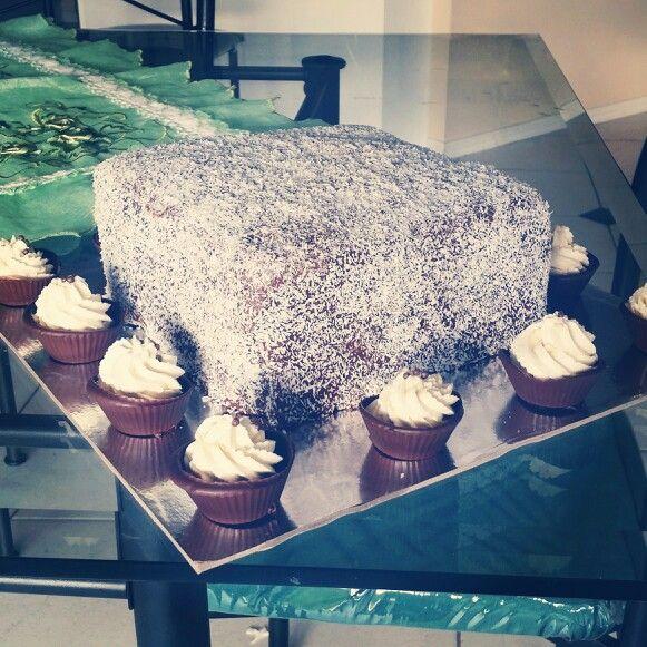 Giant Lamington Cake