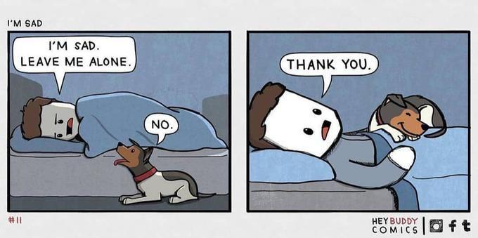 Bad Day Friend Comics Wholesome Memes Memes