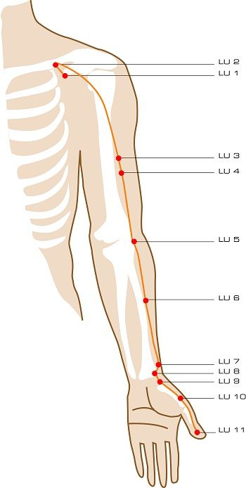 Lung Acupuncture Points  Autumn is the season of the lung. Associate with grief, letting go, and renewal.