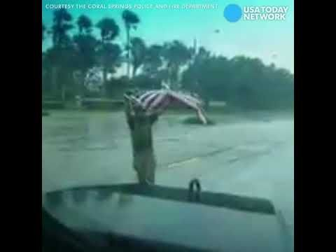Medic recovers American flag blown away by Irma