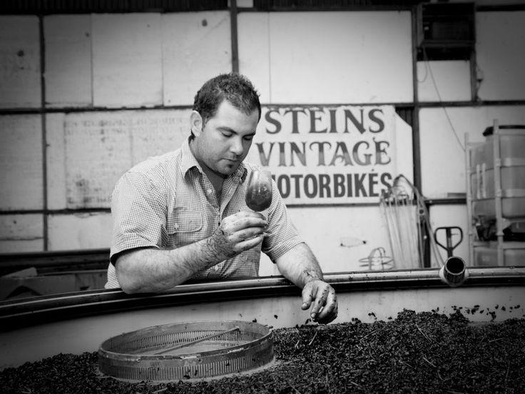 Our Story – Robert Stein Winery & Vineyard