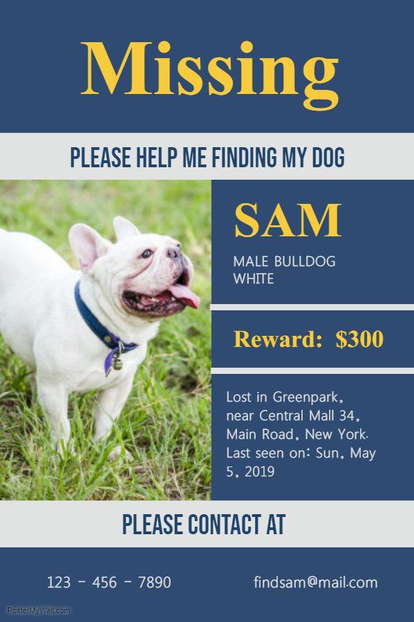 Missing Dog Poster Blue Dog Poster Losing A Dog Pets Movie