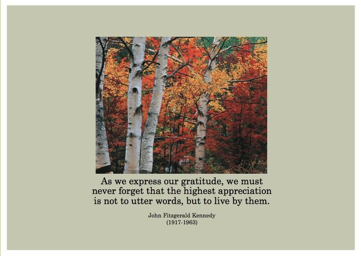 """""""As we express our gratitude, we must never forget that the highest appreciation is not to utter words, but to live by them.""""  John F Kennedy (1917-1963).  ESA Thanksgiving 2007.  http://esacompany.com/image/TGCards/TGCPin2007.jpg"""