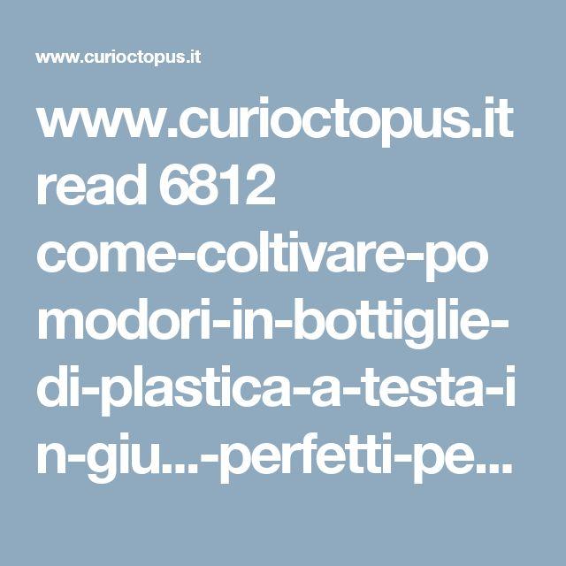 www.curioctopus.it read 6812 come-coltivare-pomodori-in-bottiglie-di-plastica-a-testa-in-giu...-perfetti-per-un-balcone