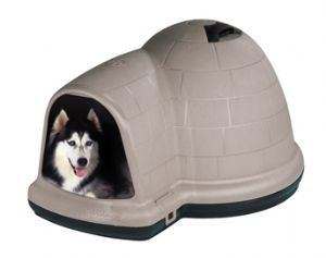 igloo for dogs-especially Huskeys
