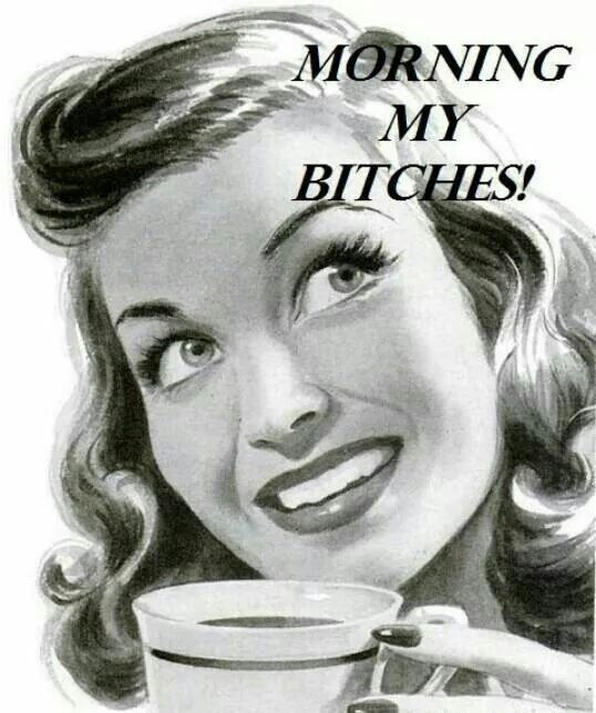 Morning Quotes Funny Pictures: Morning My Bitches