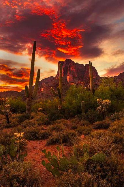 Here tell, the treasure hidden in the Superstition Mountains - Near Phoenix Arizona - can not be found by one with an impure spirit ~ The gold has been sought after by many that perished ... their souls protect the secret !! Superstition Mountains, AZ - Evan Olsone