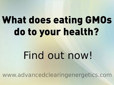 Uncover the truth behind what you are serving your children for dinner now! Get your copy of 'Why Shouldn't I eat Genetically Modified foods?' www.advancedclearingenergetics.com/gmo