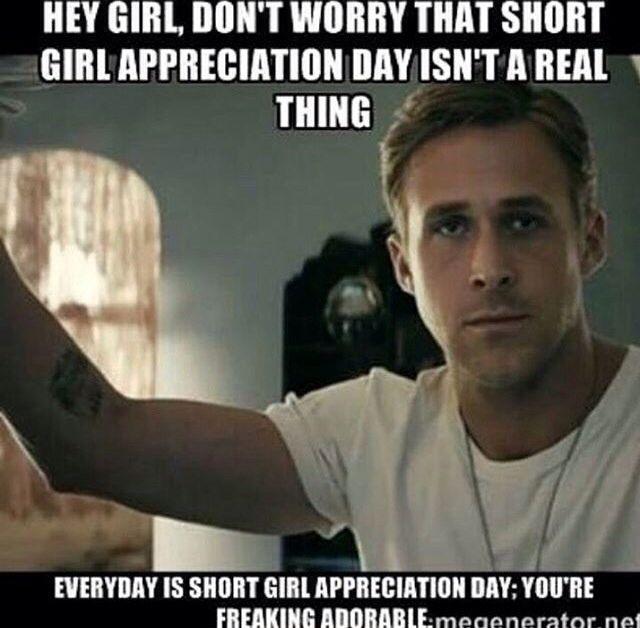 381986fc03ed7210cbc458b238439198 ryan gosling hey girl makeup meme 80 best short girl images on pinterest short girl problems,Short People Meme
