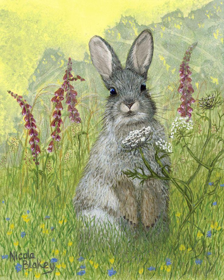 Rabbit. Sending you Bunny good wishes.