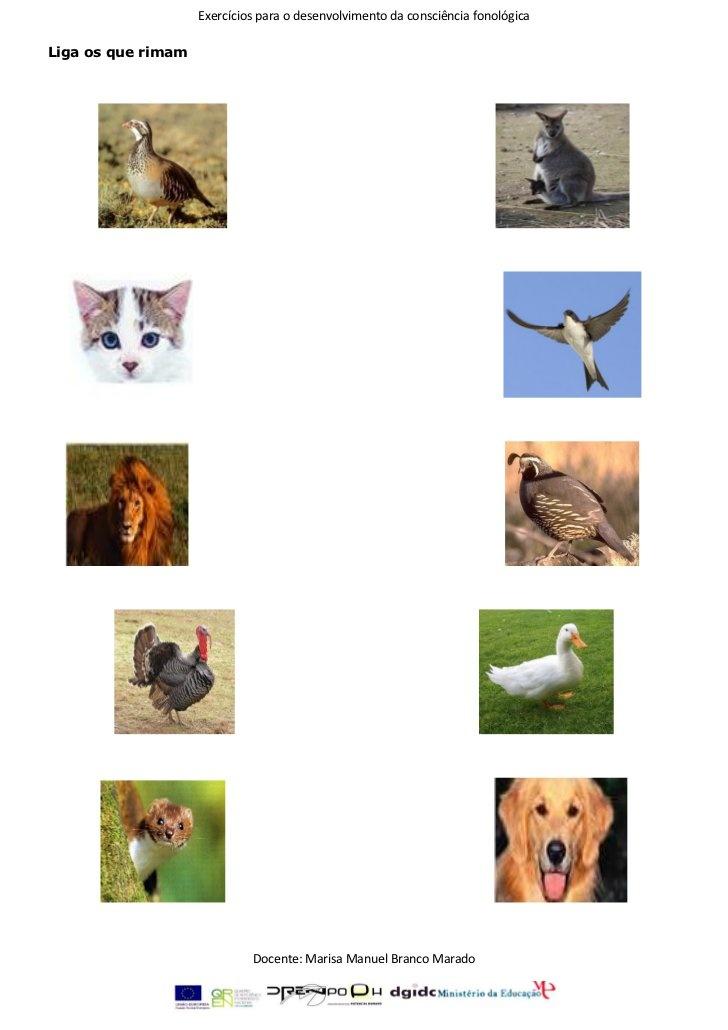 Exercícios de consciência fonológica 1 by Fmbmrd, via Slideshare