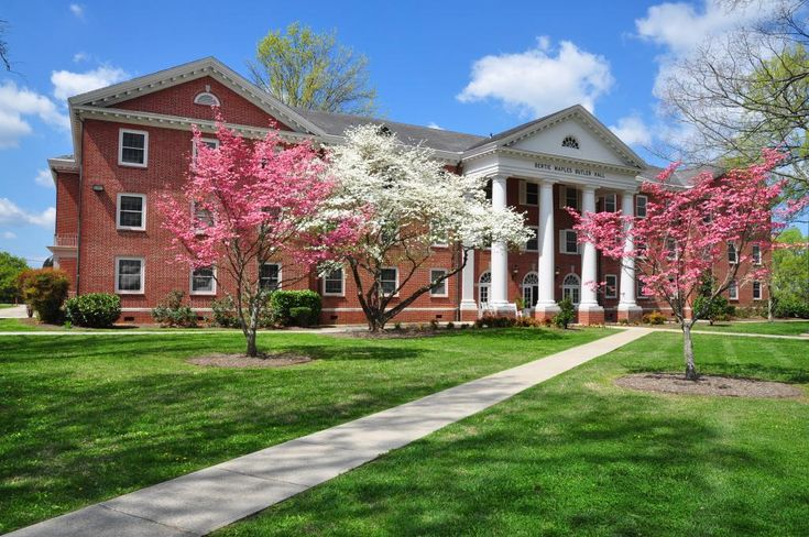 Belmont University Ranking >> 761 best University and Academia images on Pinterest | Collage, Colleges and High schools