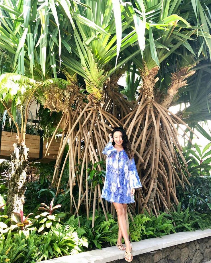 Are these palm tree's Roots? I have no clue but it looked magical 🌴 椰子の木の根っこてこんな感じなんですか? . . . 👗 @koyresort 👡 @malvados . . . #travel…