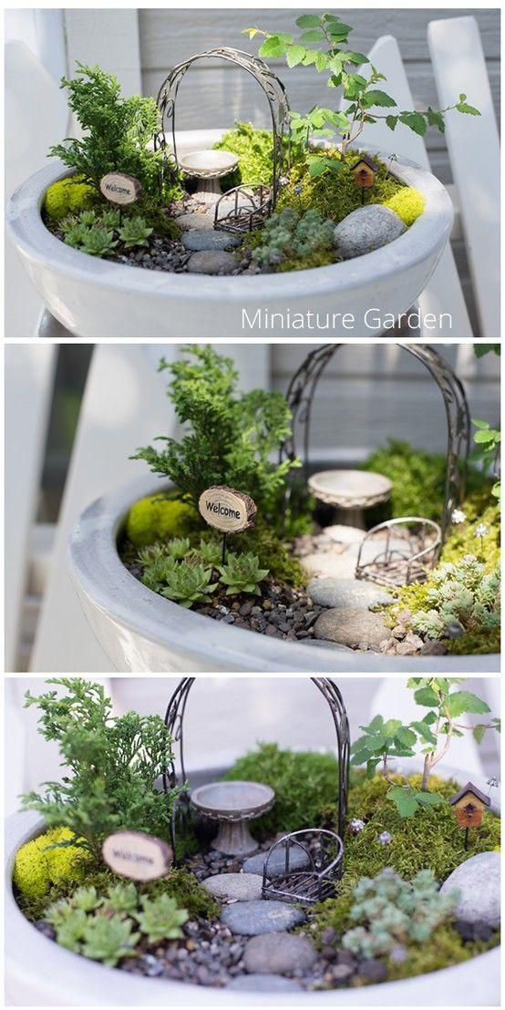 Miniature Garden.. #miniaturegarden #fairygarden