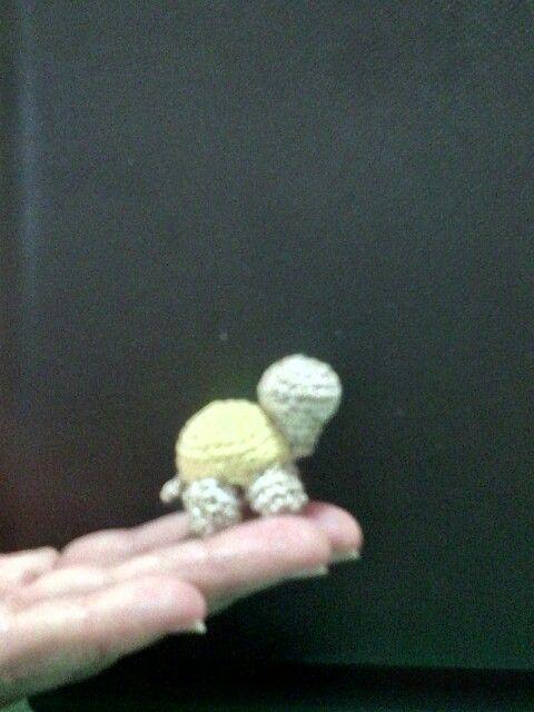 Mini tartarughina