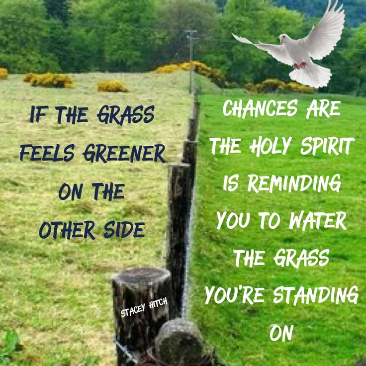 If the grass feels greener on the other side, chances are the Holy Spirit is reminding you to water the grass you're standing on.   Galatians 5:26 Let us not become conceited, provoking one another, envying one another