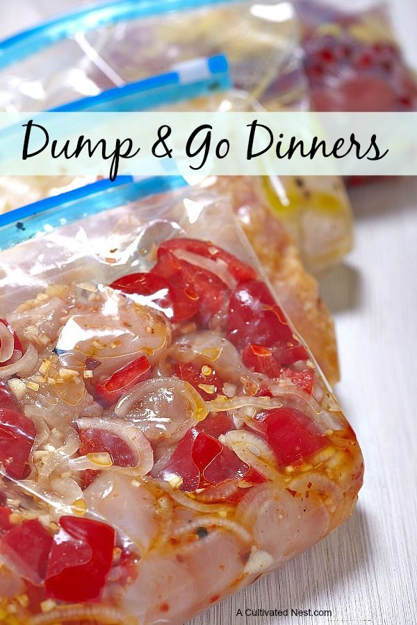 Easy and delicious dump chicken recipes that you can make ahead (super easy freezer meals). Dump cooking just means that you Dump your mix into a gallon freezer bag with your chicken & freeze it. Then when you want it you Dump it into a pan and cook it! Easy dinner idea!