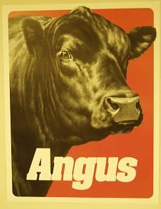 17 Best ideas about Angus Beef on Pinterest | Xmas dinner ideas ...
